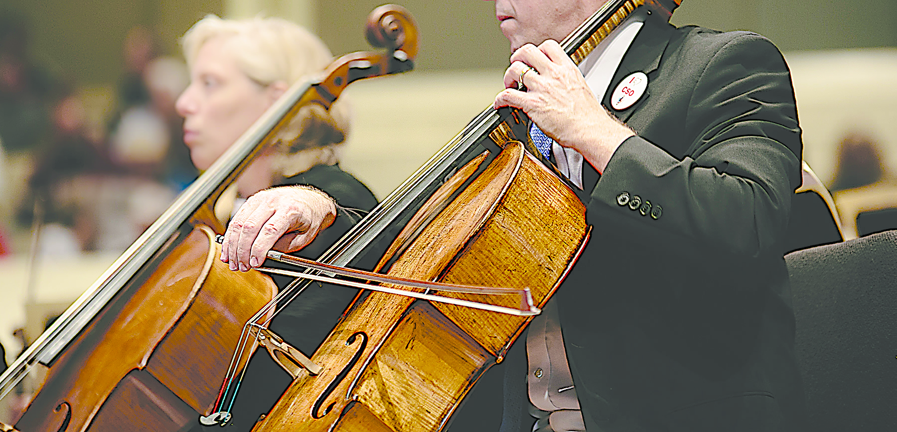 A Chautauqua Symphony Orchestra Celloist performs at a concert earlier this season in the Amphitheater.