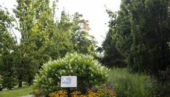081319_Gardenbustour_MS_02